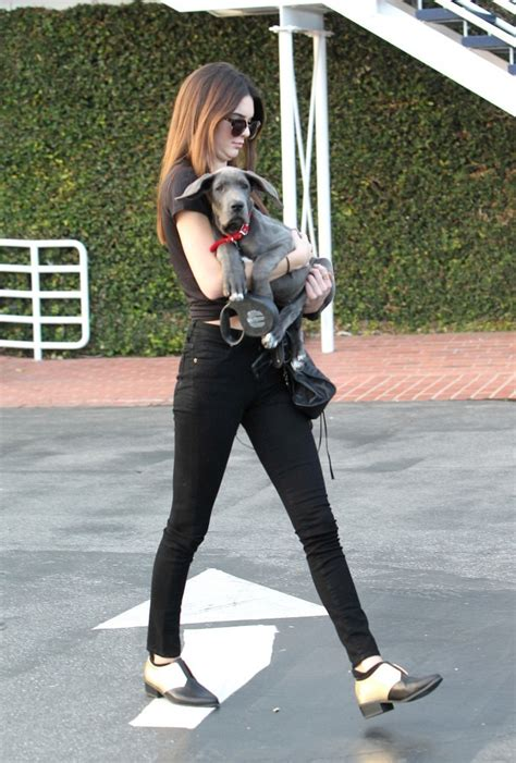 jenner puppy kendall jenner photos the jenner take their shopping 9111 of 11217