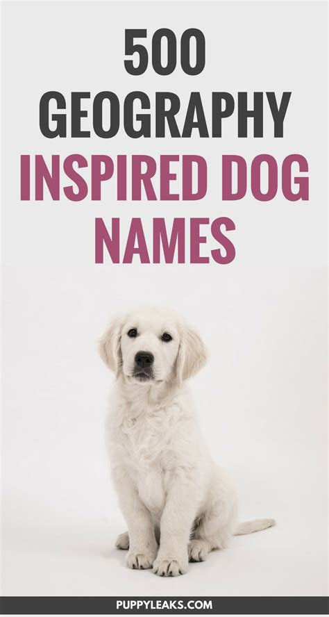 puppy themed names 500 geography inspired dog names puppy leaks