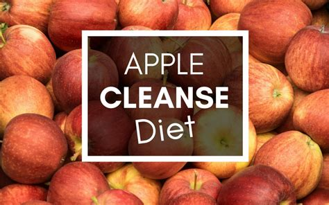 Apple Detox Diet by Apple Cleanse Diet How To Cleanse Your System In 2 Days