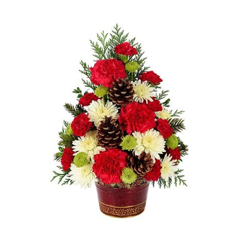 christmas tree celebration grohman s greenhouse and flowers