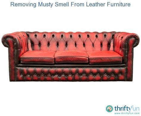removing musty smell from leather furniture thriftyfun