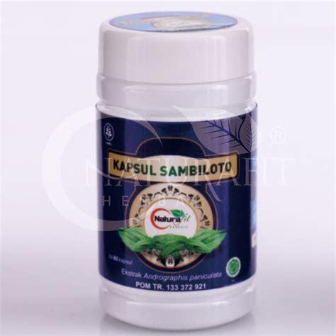 Obat Radang Paru Obat Radang Saluran Napas Sambiloto De Nature sambiloto produsen obat herbal distributor herbal pabrik herbal