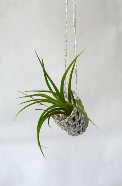 Growing Jewelry Eco Friendly Or Pointless by Living Jewelry A Growing Trend Organic Green Roots