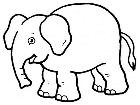 elephant preschool coloring pages zoo animals animal