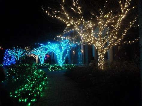 Led Tree Light Led Cherry Tree Led String Lights Led Motif Outdoor Net Lights For Trees