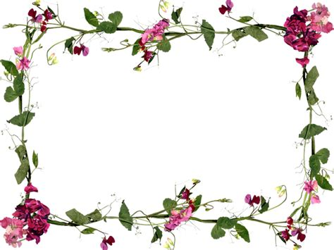 imagenes en png de flores marcos photoscape plantillas para adornar marcos para