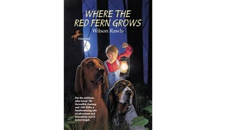 book report on where the fern grows where the fern grows by wilson rawls book report