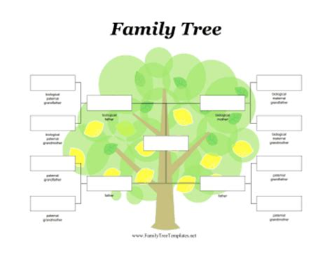 template of a family tree family tree template family tree template adoption