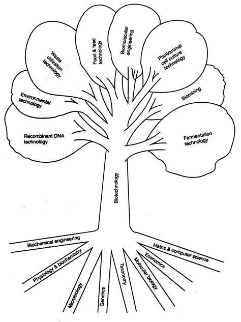 engineering drawing tree template introduction to biotechnology biocyclopedia