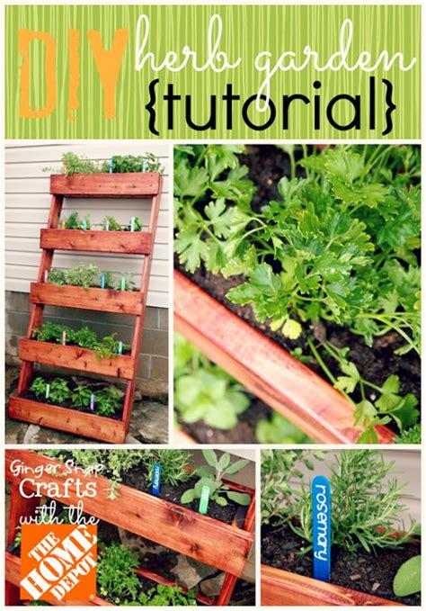 herb garden diy 45 best garden plant ideas images on pinterest