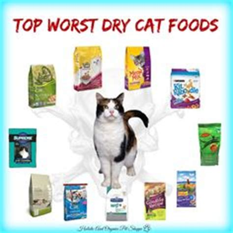 worst food brands top worst foods http www holisticandorganixpetshoppe top 12 worst