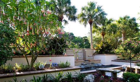Pinellas Botanical Gardens 1000 Images About Florida On Pinterest Florida Botanical Gardens Madeira And