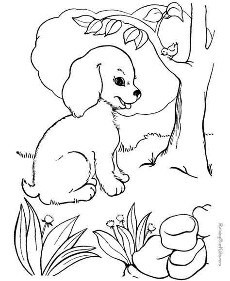 coloring book pages dog breeds dog breeds coloring pages coloring home