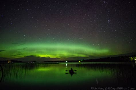 northern lights forecast tonight viewing tonight maybe kttc weather forecast