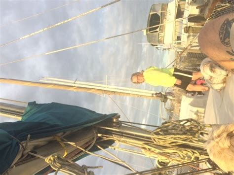 board boat sailboat sailboat 38 bruce roberts sloop full live a board for