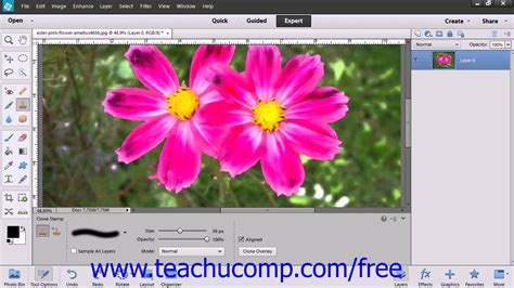 adobe photoshop tutorial using clone st tool photoshop elements 12 tutorial the clone st tool adobe