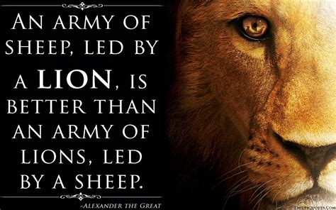 Anti Sheep Mentality by Wolf Of War Quotes Quotesgram