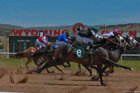 Records Wyoming Record Attendance Handle Reported At Wyoming Downs Racing News Paulick Report
