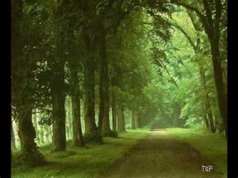 camino verde letra camino verde diana navarro de cancion