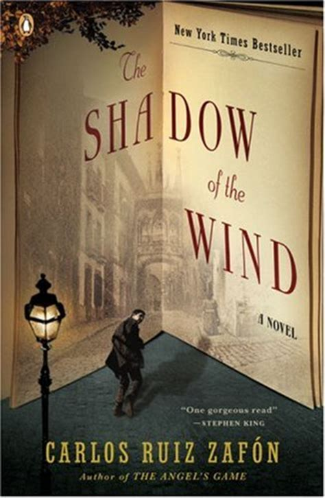 the shadow of the books the shadow of the wind by carlos ruiz zaf 243 n adcox
