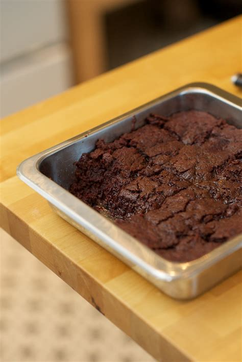 these salty oats beet brownies