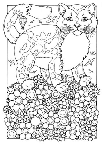 creative trees of coloring book books 綷 綷 綷 窶 綷 綷 綷 綷 崧綷