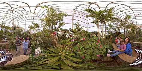 Uf Butterfly Garden by Quicktime Controls Are Click To Stop Automatic Rotation