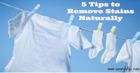 how to remove color bleed stains from clothes 5 tips to remove stains naturally savory lotus