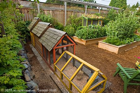 Backyard Farming Ideas 4 Efficient Backyard Farm Designs For Small Yards Outlive The Outbreak