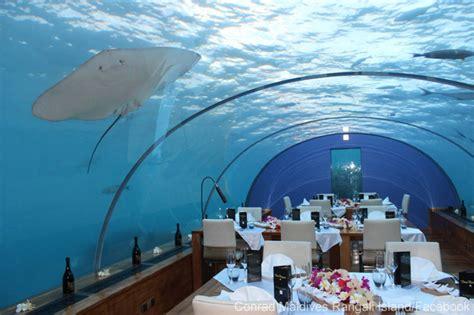 ithaa undersea restaurant le restaurant le plus incroyable du monde