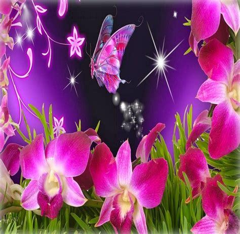 imagenes flores bellas gratis image gallery imagenes de flores gratis