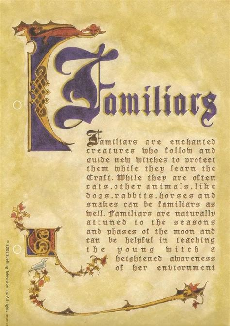 book of shadows pictures 25 best ideas about book of shadows on wicca