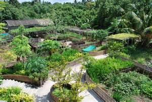 backyard permaculture australia districtbio