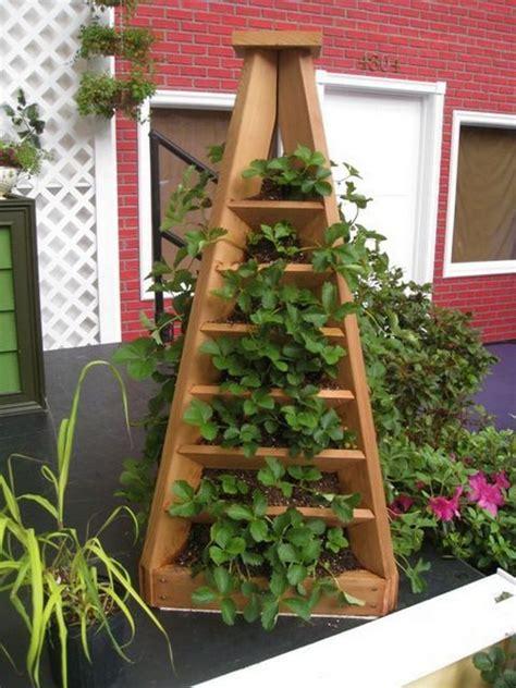 strawberry pyramid planter  owner