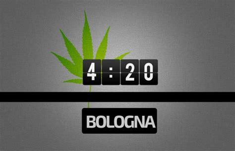 canapé imola 420 bologna inizia la raccolta firme marijuana
