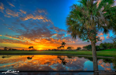 sunset course at country club palm tree sunset at golf course abacoa jupiter florida
