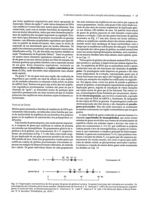 Genetica medica 6 edição thompson & thompson