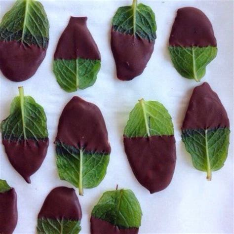 8 Things To Do With Chocolate by After Dinner Mints Anyone Thrifty Momma Ramblings