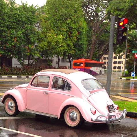 light pink volkswagen beetle light purple vw beetle www pixshark com images