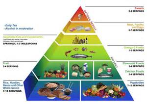 weight loss program reviews diet spotlight personal