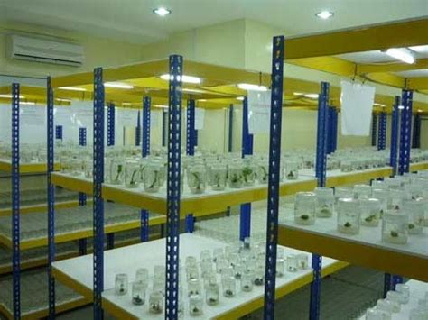 Rak Kultur Jaringan rak penyimpan botol kultur jaringan pabrikfurnitur