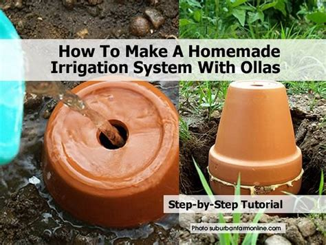 how to make a irrigation system with ollas