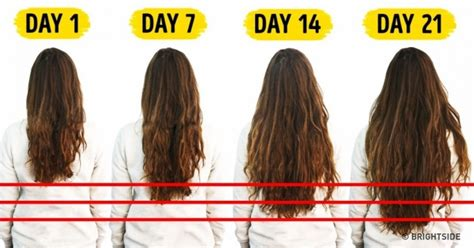 will my hair grow faster if i cut 7 foods you need to accelerate hair growth