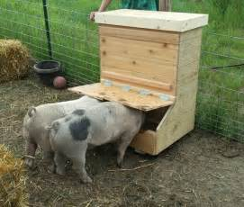 Farm Feeders Just Finished Building A Pig Feeder For Two They Seem To