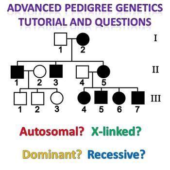 inheritance pattern pedigree quiz pedigree genetics advanced pedigree tutorial and question
