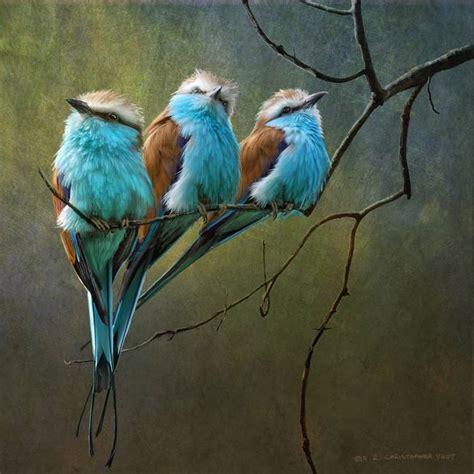 birds painting roller bird painting http lomets