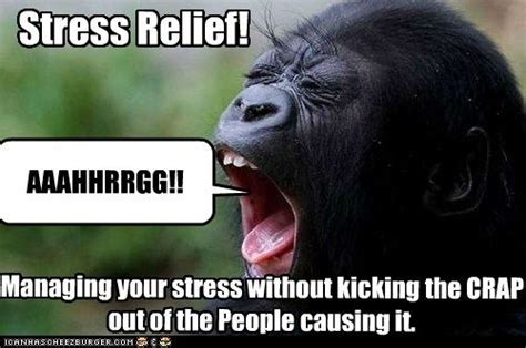 Stress Meme - stress relief funny stress and memes