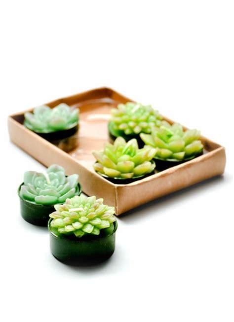 Feng Shui Kakteen by Feng Shui Ideen Positiv Aufgeladene Geschenke F 252 R Ihre