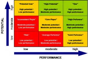 performance values matrix 9 box grid
