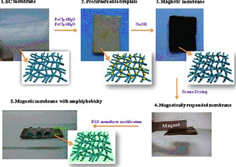 How To Draw Plane magnetic responsive cellulose nanocomposites and their